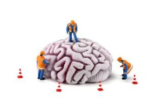 Concept: Construction workers inspecting brain